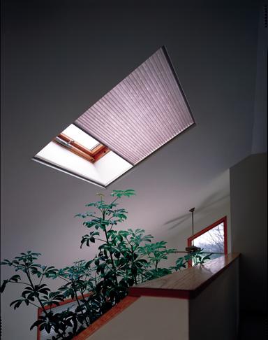 Cellular_Skylight